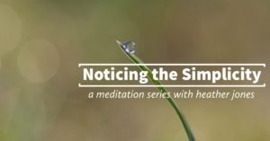 noticing the simplicity event header image